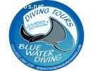 1 Month Divemaster Internship - Gran Canaria