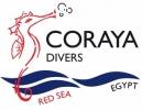 Coraya Divers, Marsa Alam sucht für 2017  Instruktoren, DM trainees und Rezept.