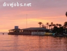 Dive center in the Sea Of Cortez looking for Japanese speaking DM or Instructor