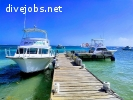 Dive Instructor in Grand Cayman