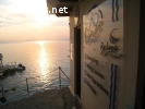 Divemaster Internship Summer 2021