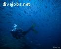 Environmental Scuba Diving