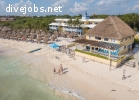 IDC internship opportunity - Playa del Carmen, Mexico