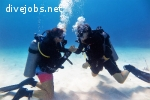 Marine Conservation & PADI training