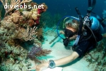 Marine Life Conservation Assistant