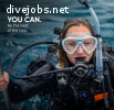 Not got 3,4 or 6 months to work for free? Join us and become a PADI Divemaster faster