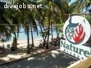 OWSI / Marine Conservation Volunteer Program