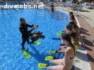 Parttime Divemaster for Poolshows