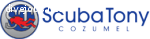 Scuba Operation Manager / Reservations at ScubaTony